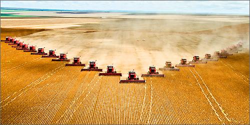 Stop Article Farming