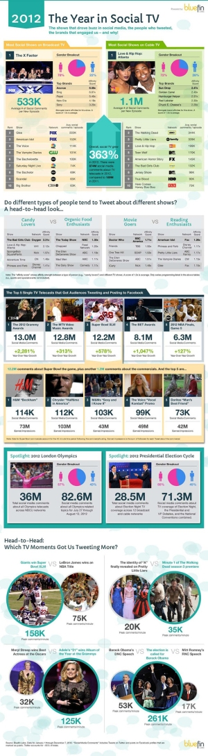 BlueFins Social TV 2012 Report