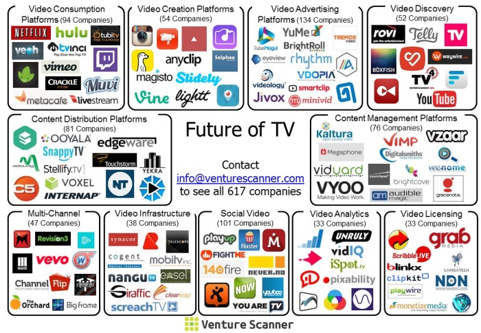 future-of-tv-visual-map5